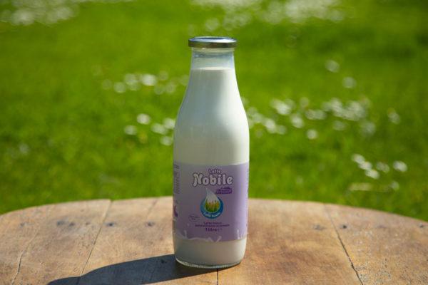Latte-Nobile-parzialmente-screamato-1-litro