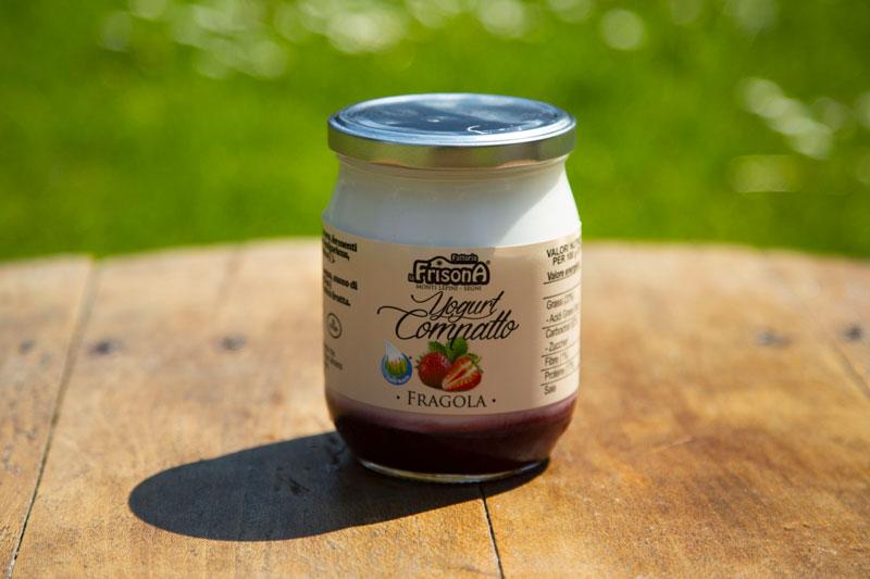 yogurt-fragola